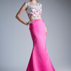 Two Piece Memriad Shape Pink-White Dress CD11802